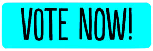 St. Pete Beach Awards Vote now